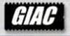 GIAC VR6 CAM  CHIP ( GARRETT ) VW VR6 MK3