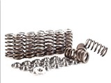 IE FSI 2.0T Valve Spring/Retainer Kit /